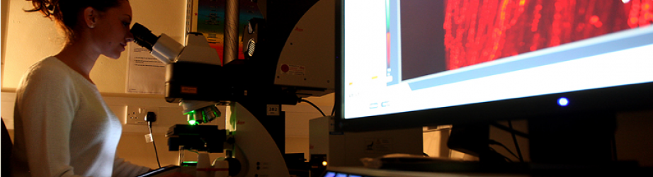 PhD Student in laboratory